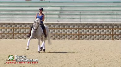02/05/15 - Daniel Dockx - Young Grand Prix Horse by Dressage Today Online