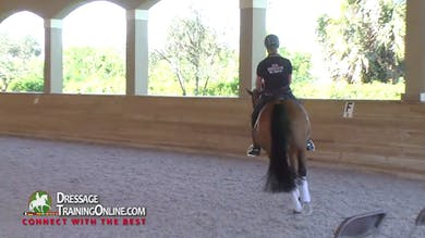 Catherine Haddad - Consistent Training by Dressage Today Online