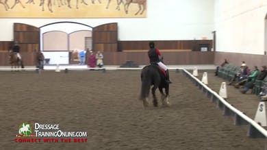 Debbie McDonald and Janet Foy - Para Dressage and Training Level Test 3 by Dressage Today Online