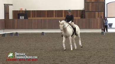 05/14/15 - Debbie McDonald and Janet Foy - Training Level Test Two by Dressage Today Online
