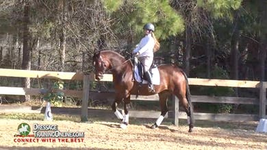 06/05/15 - Laura Graves - Lots of Transitions by Dressage Today Online
