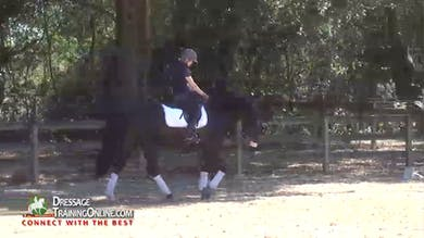 Laura Graves - Always Forward by Dressage Today Online