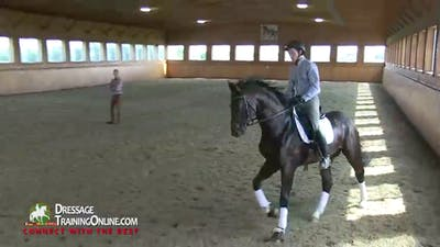 Instant Access to Dr. Ulf Moller - Young Stallion by Dressage Today Online, powered by Intelivideo