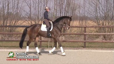 Helen Langehanenberg - Working Toward Prix St. Georges Intro by Dressage Today Online