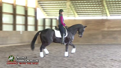 Instant Access to 09/02/15 - Laura Graves - Using Body Positioning by Dressage Today Online, powered by Intelivideo