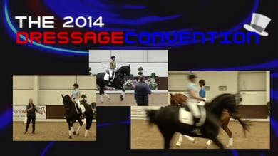 10/24/15 - 2014 Dressage Convention - Florian Bacher - The Effectiveness of In-Hand Training by Dressage Today Online