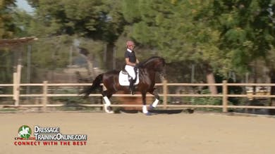Juan Manuel Munoz Diaz - 5 Year Old by Dressage Today Online