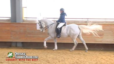 FEI Judge Janet Foy - Intermediate Level by Dressage Today Online