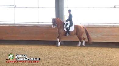 Janet Foy - 06/14/16 - Intermediate 1, Test Ridden, Scored and Training Tips For Improvement by Dressage Today Online