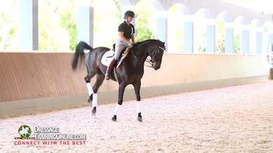 Catherine Haddad - Explanation of Skeletal Riding, rider position, swing, sitting trot, half halts, engaging the core, sitting the canter by Dressage Today Online