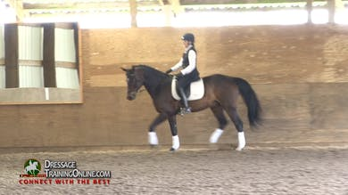 Laura Graves - 10/13/16 - Getting your horse attentive and responsive to your aids by Dressage Today Online