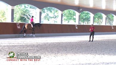 Catherine Haddad - 02/02/17 - Four Year Old by Dressage Today Online