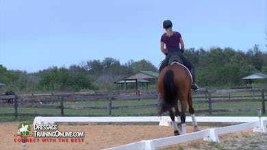 Chrissa Hoffman - 03/02/17 - Riding an Upper Level Schoolmaster by Dressage Today Online