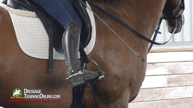 Courtney King-Dye - 03/16/17 - Whisper Shout Aids by Dressage Today Online