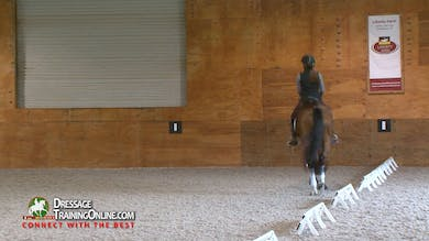 Gary Rockwell - 6/1/17 - Half Pass by Dressage Today Online
