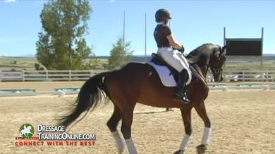 Steffen Peters - Third Level Work by Dressage Today Online