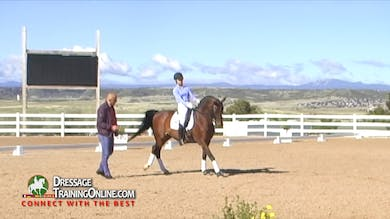 Michael Klimke - 8/24/17 - Intermediate 1 by Dressage Today Online