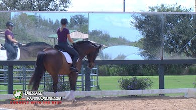 Chrissa Hoffman - 11/02/17 - Lower Level Schoolmaster by Dressage Today Online