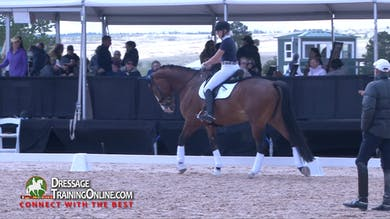 Steffen Peters - 12/21/17 - Effective Half Halts by Dressage Today Online