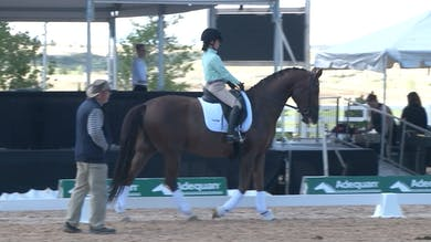 Axel Steiner - 02/01/18 - Moving Up To Third by Dressage Today Online