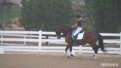 Judy Reynolds - Upper Level Work, Day1/Ride 1 by Dressage Today Online