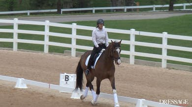 Judy Reynolds - Upper Level Work, Day1/Ride 4 by Dressage Today Online