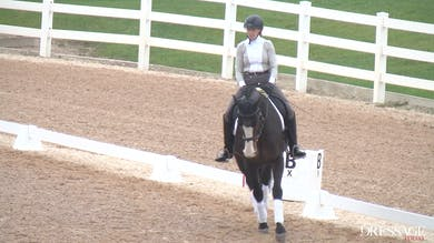 Judy Reynolds - Upper Level Work, Day1/Ride 2 by Dressage Today Online