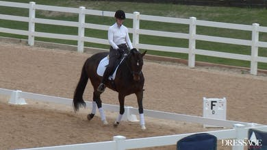 Judy Reynolds - Upper Level Work, Day1/Ride 5 by Dressage Today Online