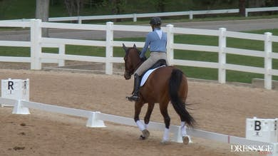 Judy Reynolds - Upper Level Work, Day1/Ride 6 by Dressage Today Online