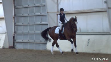 Judy Reynolds - Upper Level Work, Day 2/Ride 1 by Dressage Today Online