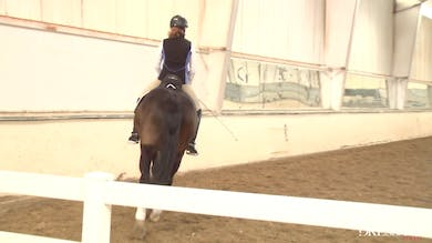 Judy Reynolds - Upper Level Work, Day 2/Ride 2 by Dressage Today Online