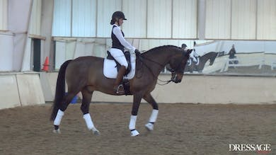 Judy Reynolds - Upper Level Work, Day 2/Ride 3 by Dressage Today Online