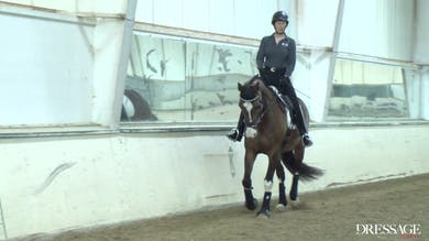 Judy Reynolds - Upper Level Work, Day 2/Ride 4 by Dressage Today Online