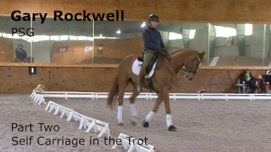 Instant Access to Gary Rockwell - PSG - Part Two - Self Carriage in the Trot by Dressage Today Online, powered by Intelivideo