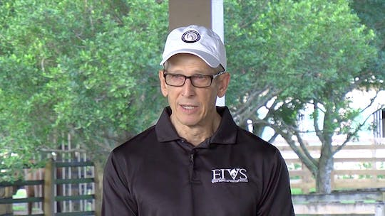 Dr. Steve Engle - Equine Chiropractor by Dressage Today Online, powered by Intelivideo