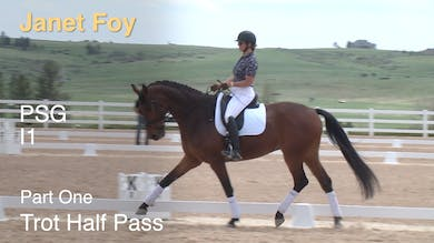 Janet Foy - Prix St. Georges/Intermediate 1, Part 1 by Dressage Today Online