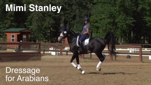 Instant Access to Mimi Stanley - Dressage for Arabians by Dressage Today Online, powered by Intelivideo