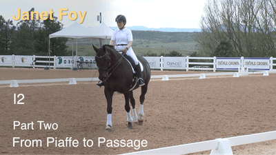Instant Access to Janet Foy - Intermediate II, Part 2 - Piaffe/Passage by Dressage Today Online, powered by Intelivideo