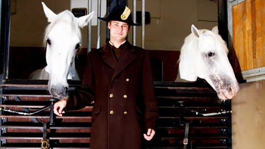 Florian Bacher by Dressage Today Online