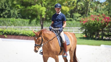 David Marcus - Structure Your Warm-Up, Part 2 by Dressage Today Online