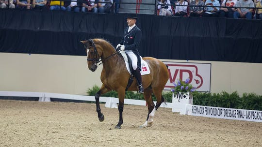 Lars Petersen by Dressage Today Online