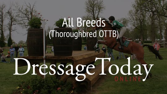 Thoroughbred OTTB by Dressage Today Online