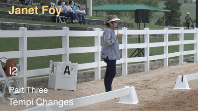 Instant Access to Janet Foy - Intermediate II, Part 3 - Tempi Changes by Dressage Today Online, powered by Intelivideo