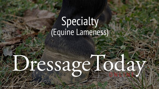 Equine Lameness by Dressage Today Online