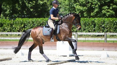 Nicholas Fyffe - Cross-Training for Horse and Rider Intro by Dressage Today Online