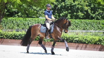 Nicholas Fyffe - Cross-Training for Horse and Rider, Part 4 by Dressage Today Online