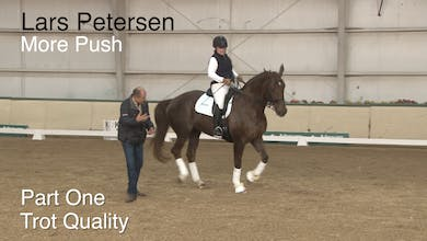 Lars Petersen - More Push - Part One - Trot Quality by Dressage Today Online
