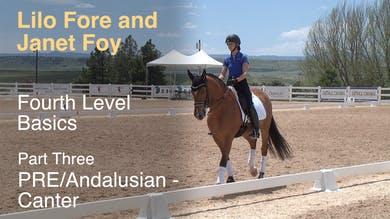 Janet Foy and Lilo Fore - Fourth Level Basics - Part Three - PRE/Andalusian - Canter by Dressage Today Online