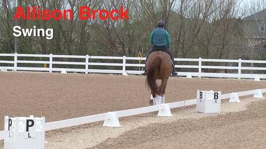 Instant Access to Allison Brock - Swing by Dressage Today Online, powered by Intelivideo