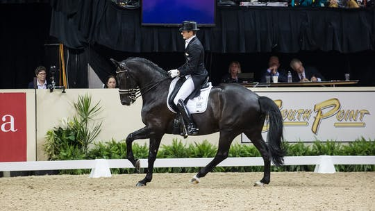 Edward Gal by Dressage Today Online